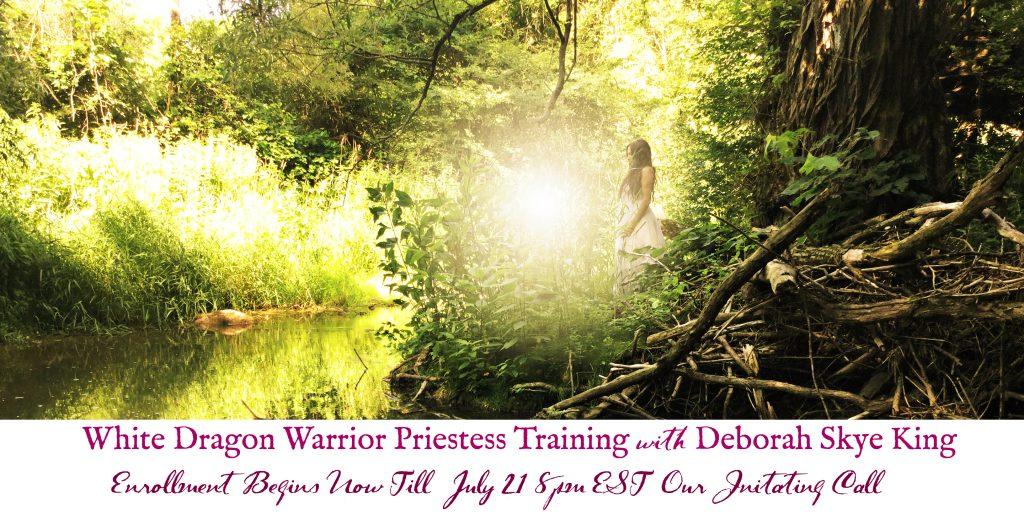 White Dragon Warrior Training Enroll